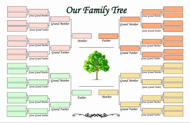 Family Tree Maker Free Online Elegant Printable Family Tree Maker Template