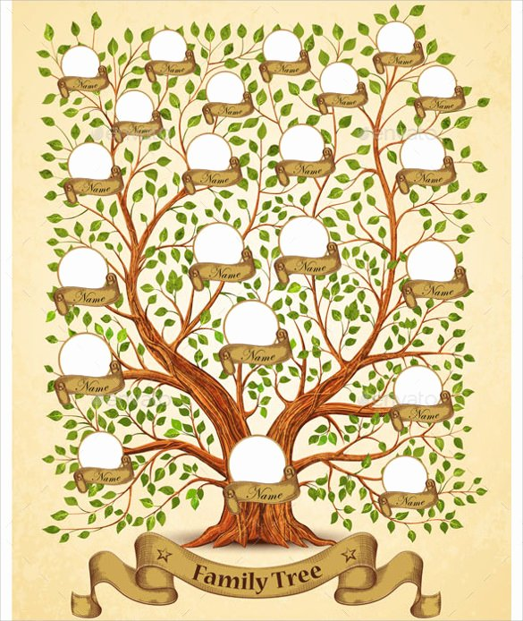Family Tree Template Google Docs Beautiful Free 56 Family Tree Templates In Word Apple