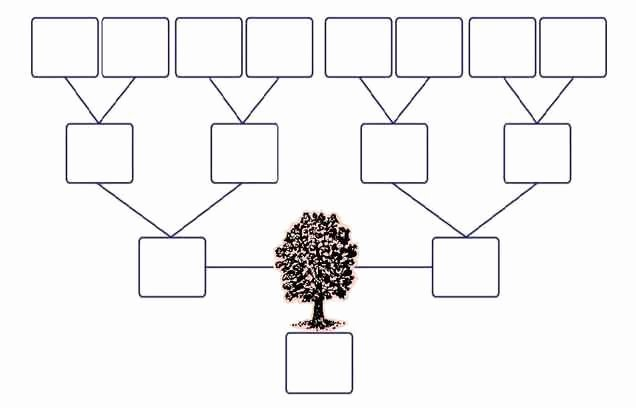 Family Tree Template Google Docs New Family Tree Template Google Search