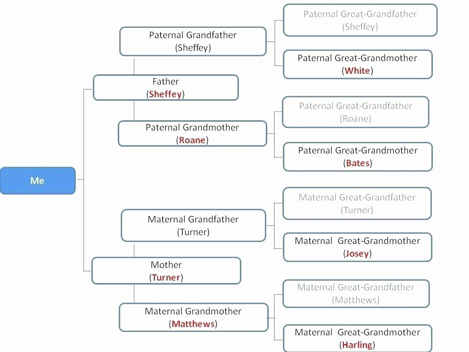 Family Tree Template Google Docs Unique Immediate Family Tree Template – Jagraj
