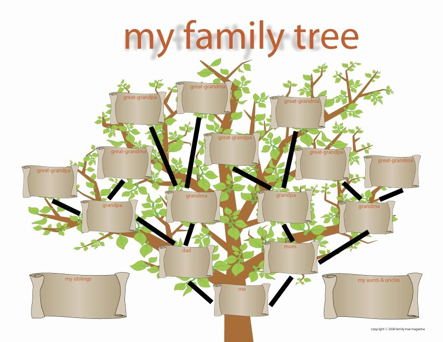 Family Tree Template Online Elegant 50 Free Family Tree Templates Word Excel Pdf