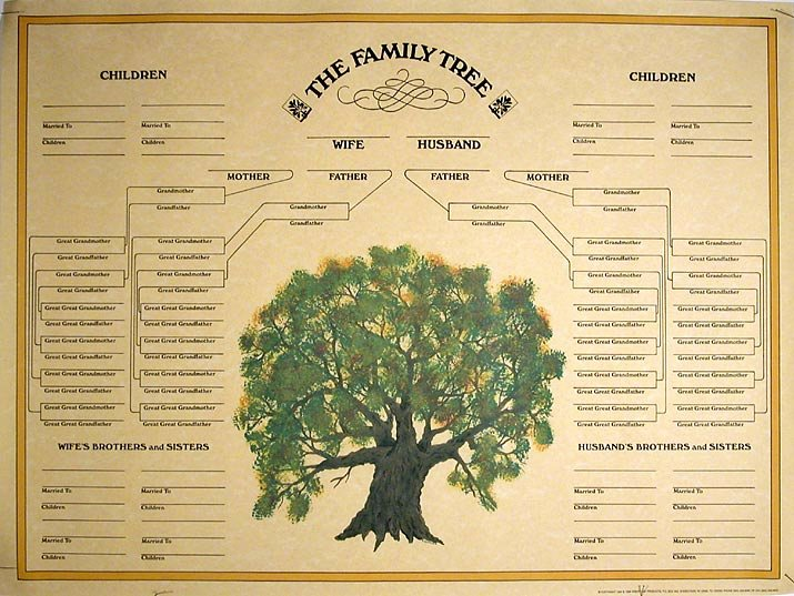 Family Tree Template Online Inspirational Family Tree Template Blank Family Tree