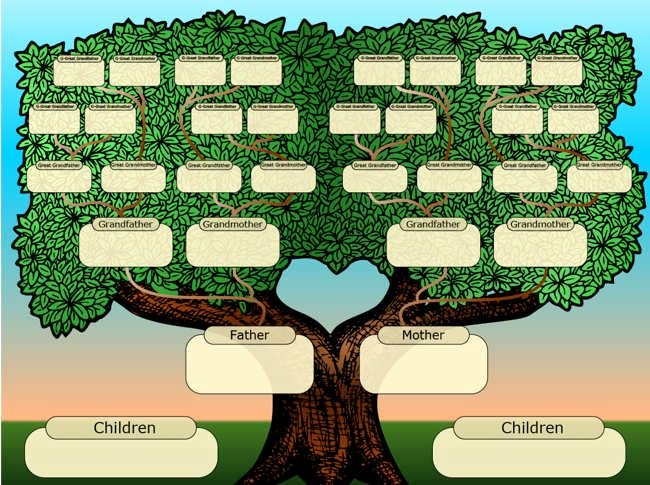 Family Tree Template Online Lovely 25 Best Ideas About Family Tree Templates On Pinterest
