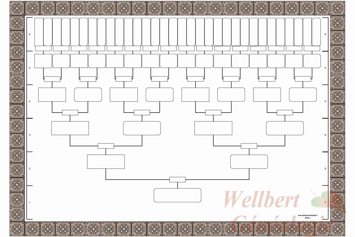 Family Tree Template Online Lovely Fill Blank Family Tree Template …
