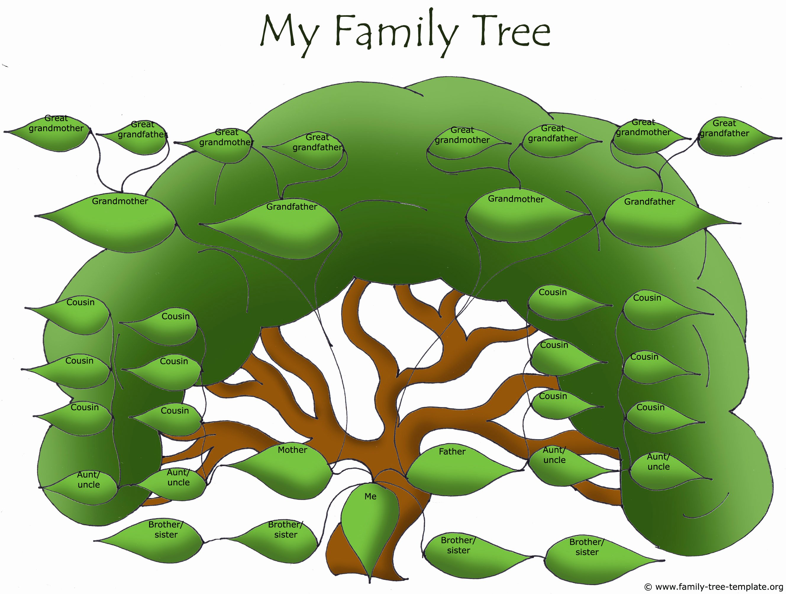Family Tree Template with Siblings Awesome Free Family Tree Templates Using Free Ancestry Information
