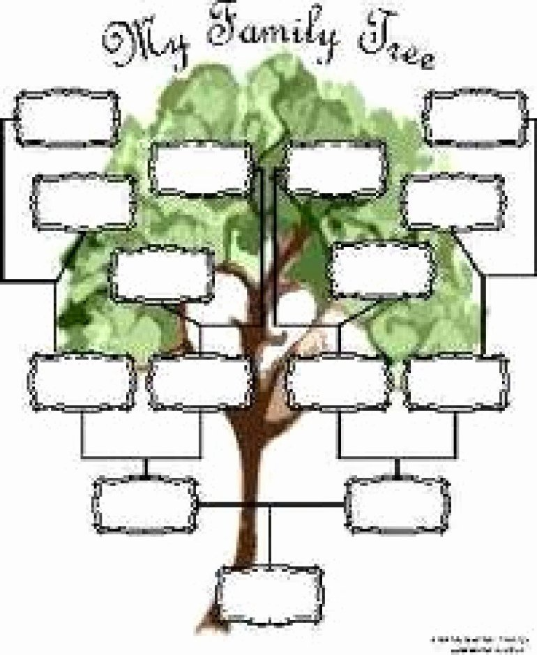 Family Tree Template with Siblings Awesome Reaper List Activity Sections Family Genealogy