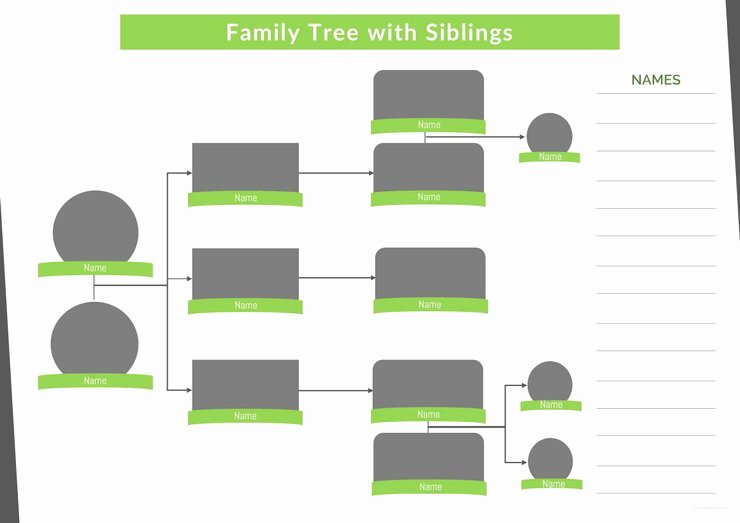 Family Tree Template with Siblings Fresh 37 Family Tree Templates Pdf Doc Excel Psd