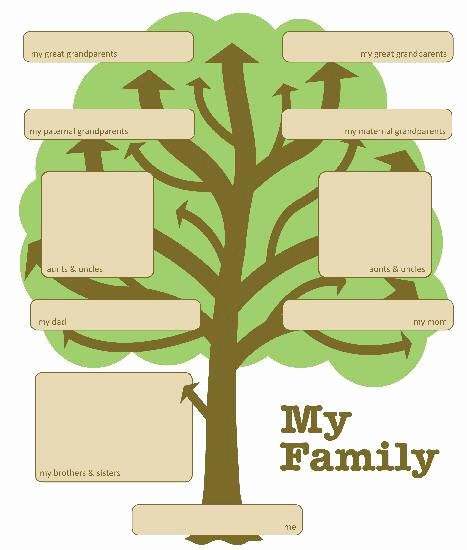 Family Tree Template with Siblings Fresh Simple Family Tree Templates