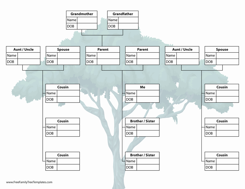 Family Tree Template with Siblings Inspirational Family Tree with Cousins Template – Free Family Tree Templates