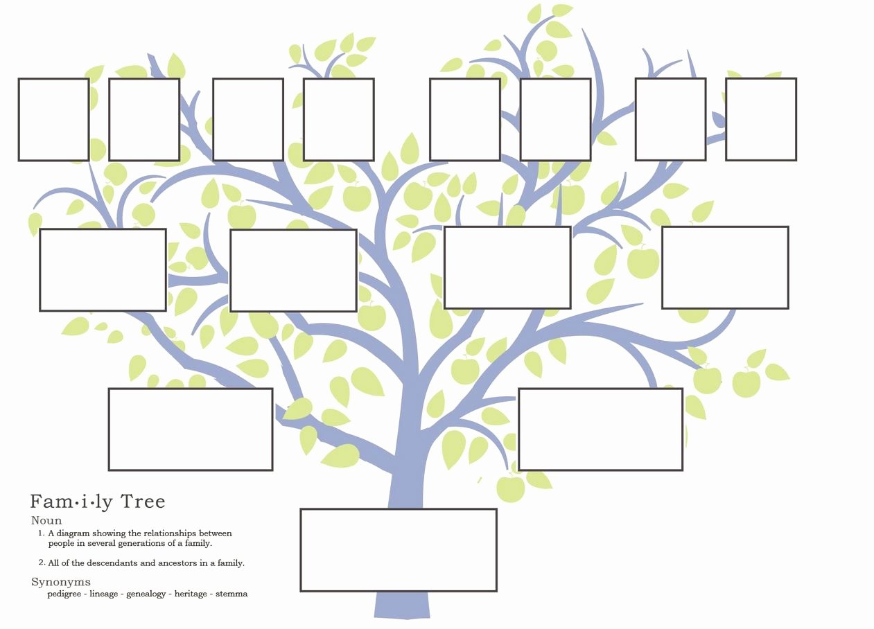 Family Tree Template with Siblings Lovely Family Tree Template Fotolip