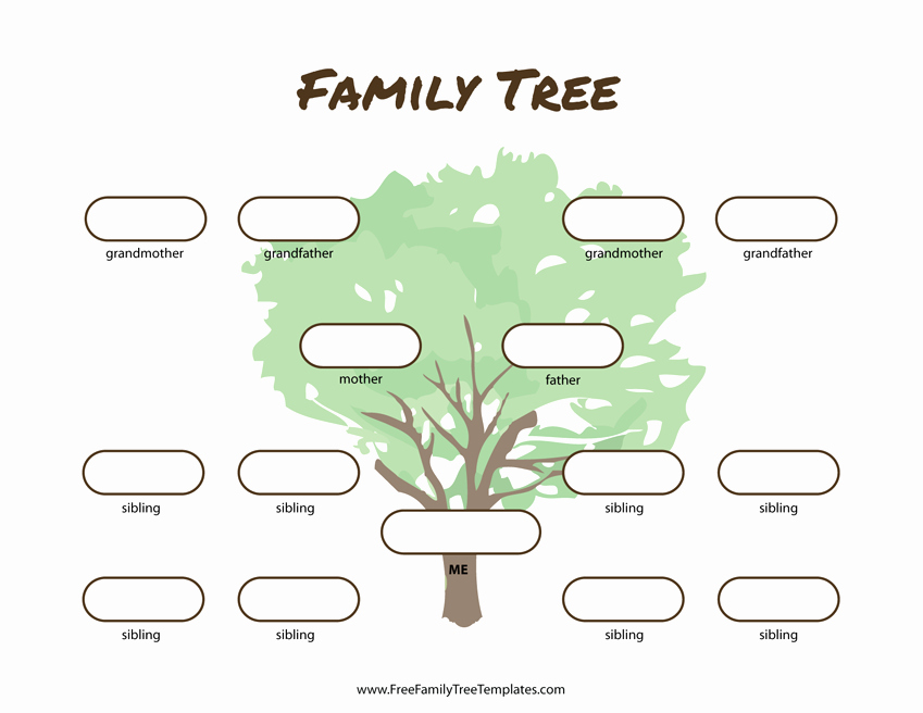 Family Tree Template with Siblings Luxury 3 Generation Family Tree Many Siblings Template – Free