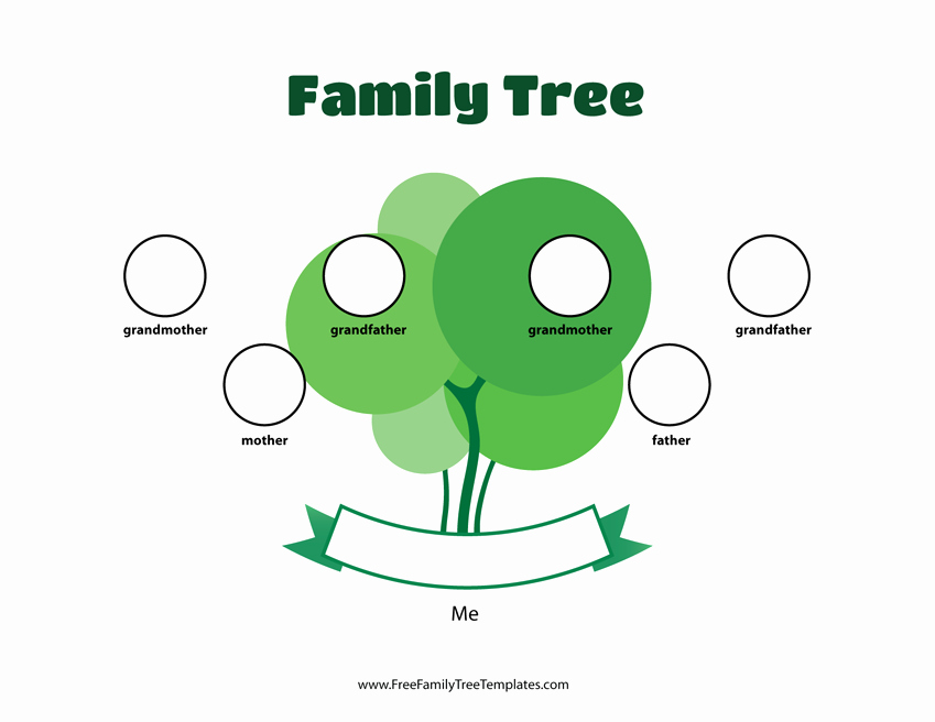 Family Tree Template with Siblings Luxury 3 Generation Family Tree Template – Free Family Tree Templates