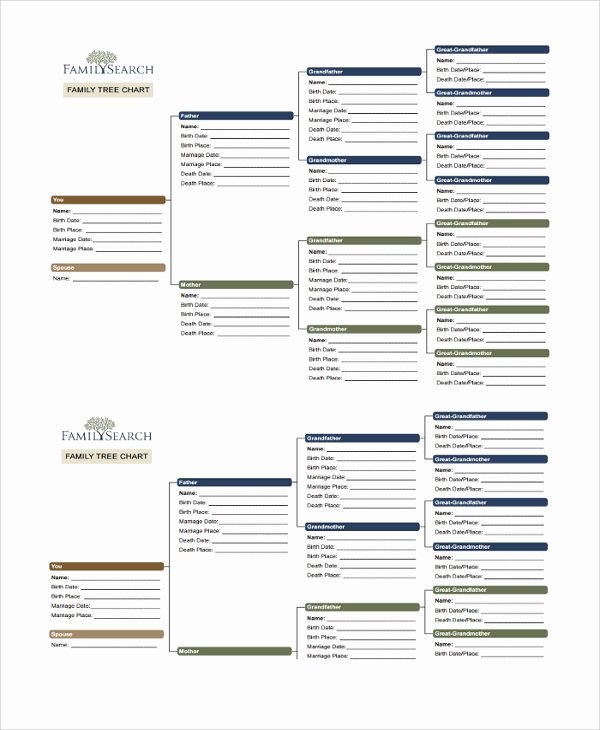 Family Tree Templates Excel Unique Sample Family Tree Chart Template 17 Documents In Pdf