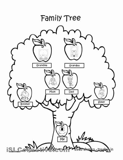 Family Tree Worksheet Printable Fresh 37 Awesome Family Tree Worksheet Images