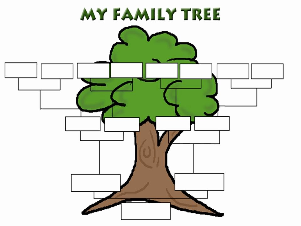 Fill In Family Tree Beautiful Printable Fill In Family Tree Clipart Best