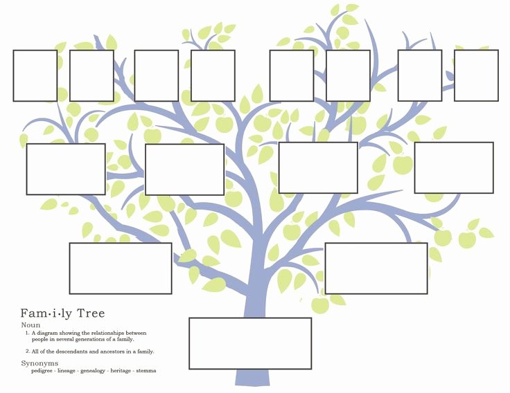 Fill In Family Tree Fresh Family History Activities for Children 3 11