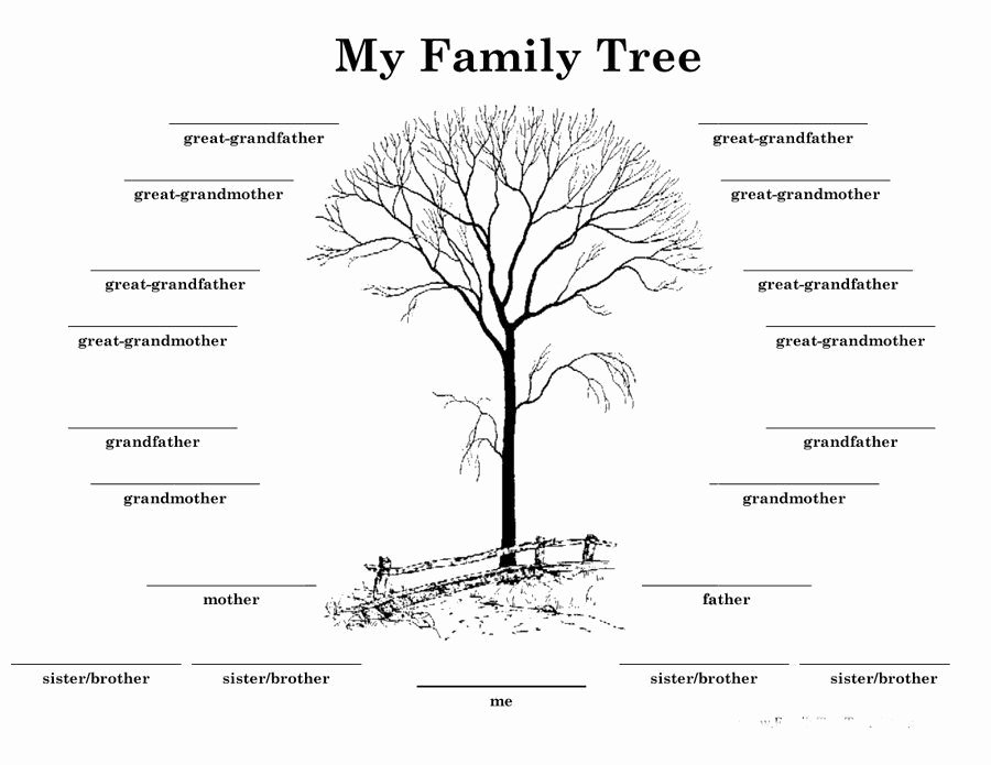 Fill In Family Tree Luxury Download Family Tree Template 13