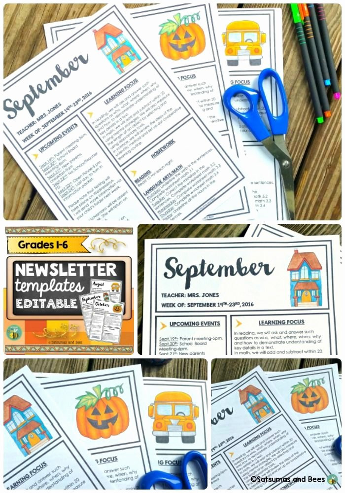 Free Editable Newsletter Templates Inspirational 17 Best Images About Classroom Management Ideas to