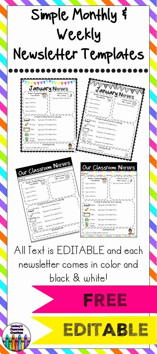 Free Editable Newsletter Templates Inspirational 25 Best Ideas About Newsletter Templates On Pinterest