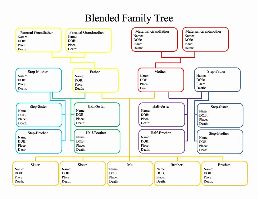 Free Family Tree Template Excel New 50 Free Family Tree Templates Word Excel Pdf