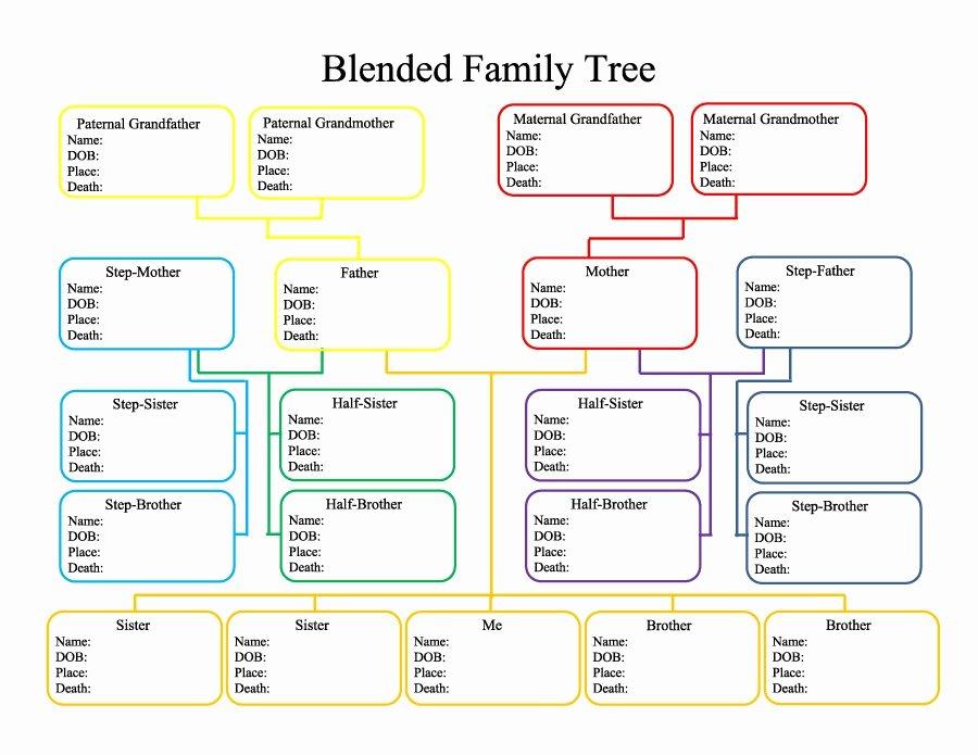 Free Family Tree Template Word Fresh 50 Free Family Tree Templates Word Excel Pdf