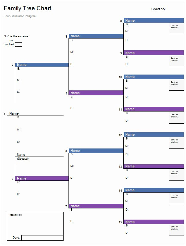 Free Family Tree Template Word Inspirational Free 56 Family Tree Templates In Word Apple