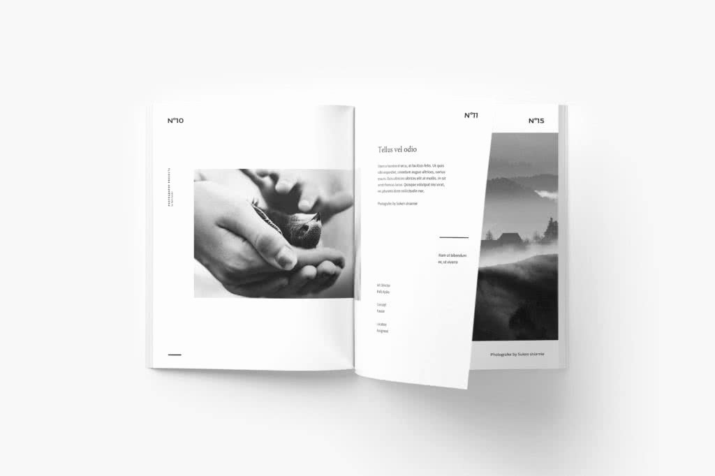 Free Indesign Portfolio Templates Fresh 65 Fresh Indesign Templates and where to Find More