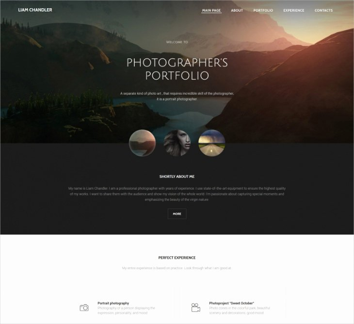 Free Portfolio Website Templates Awesome 8 Best Grapher Website themes & Templates