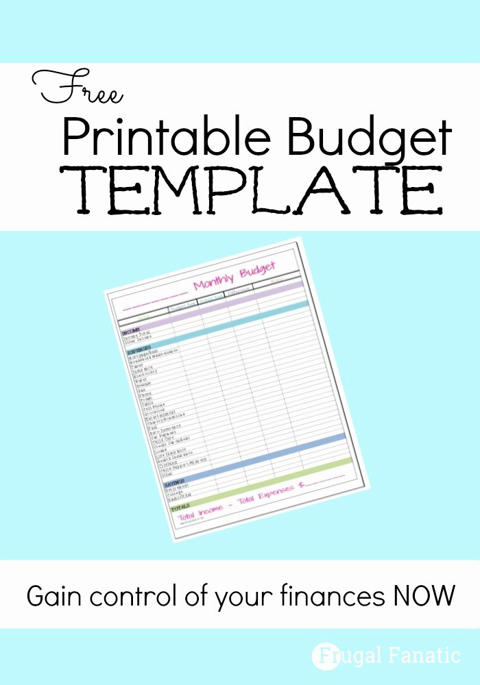 Free Printable Budget Templates Beautiful Free Monthly Bud Template Frugal Fanatic