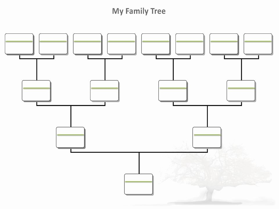 Free Printable Family Tree Beautiful Blank Family Tree Template