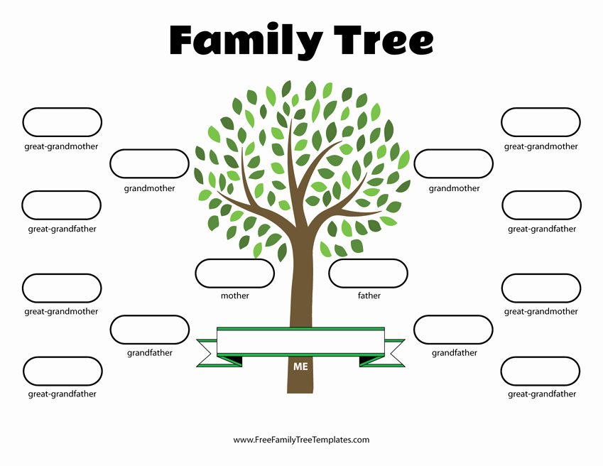 Free Printable Family Tree Fresh 4 Generation Family Tree Template – Free Family Tree Templates