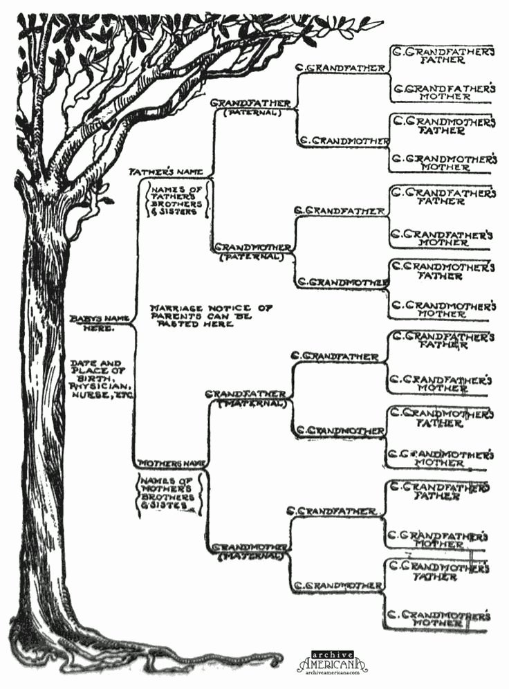 Free Printable Family Tree Inspirational Start A Genealogical Record for Your Family 1905