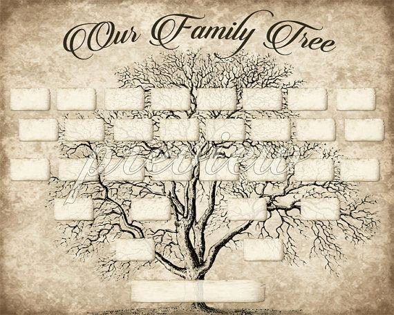 Free Printable Family Tree Unique Custom Family Tree Printable 5 Generation Template