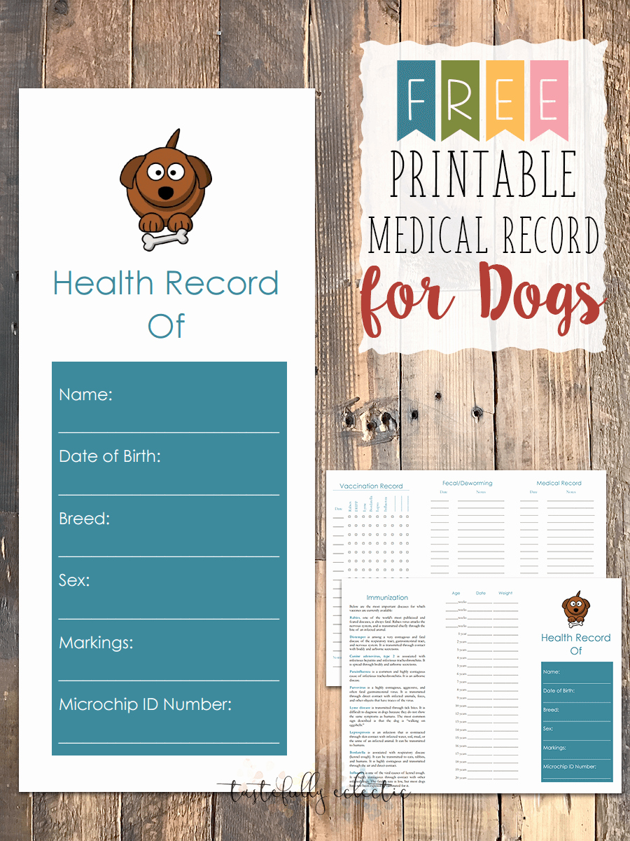 Free Printable Medical forms Fresh Free Printable Medical Record for Dogs Tastefully Eclectic