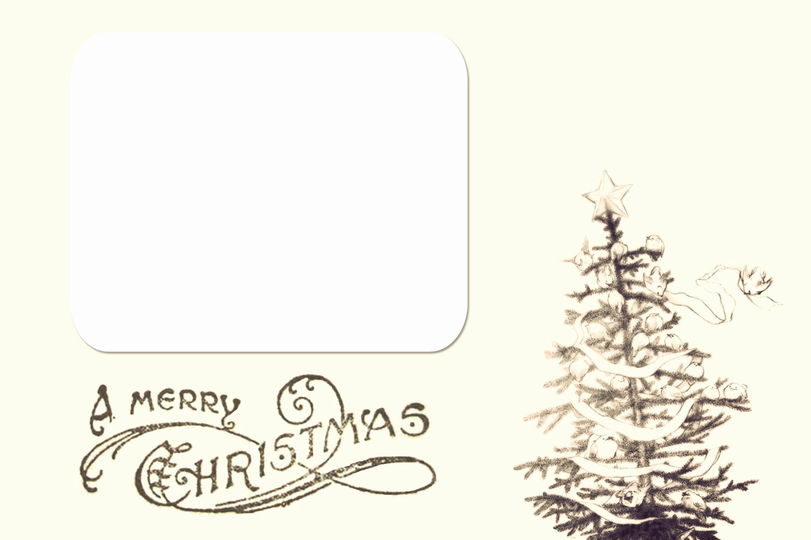Free Printable Postcard Templates Best Of Chloe Moore Graphy the Blog Free Christmas Card