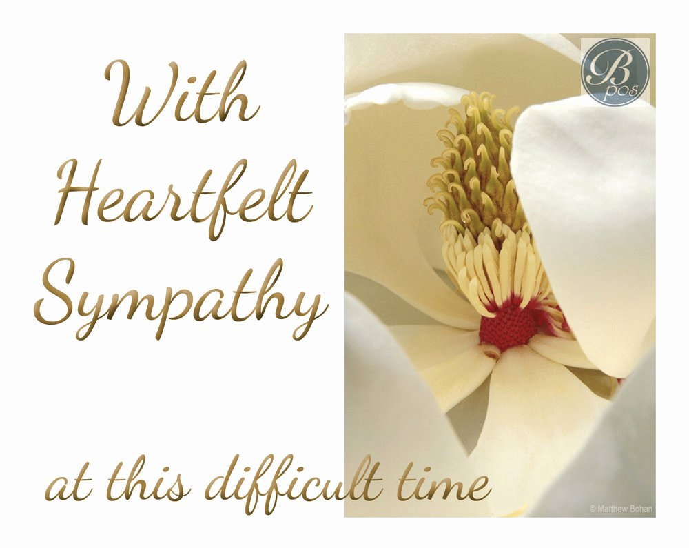 Free Printable Sympathy Cards Beautiful Heartfelt Sympathy Sympathy Card Printable Instant