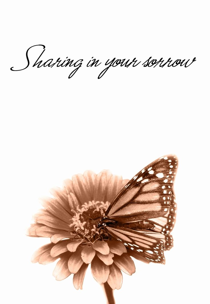 Free Printable Sympathy Cards Lovely 32 Best Sympathy Cards Images On Pinterest