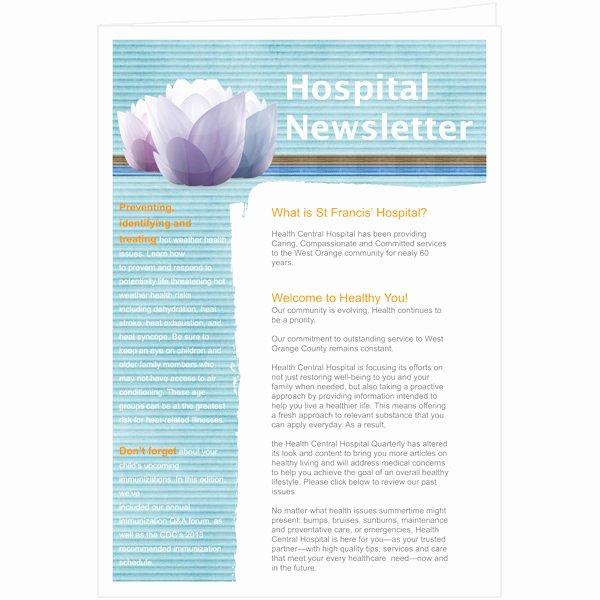 Free Publisher Newsletter Templates New Newsletter Templates & Samples