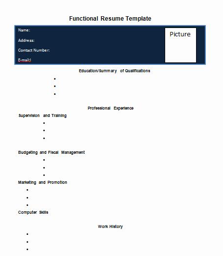 Functional Resume Template Word Lovely Blank Functional Resume Template