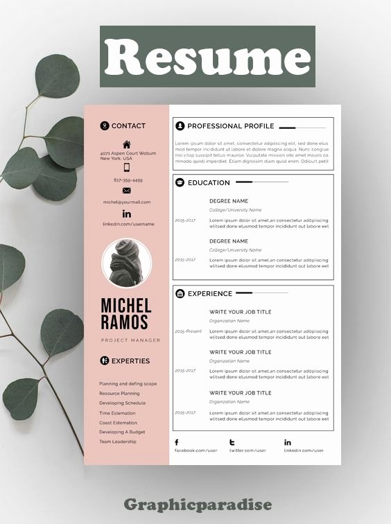 Functional Resume Template Word Lovely Modern Resume Template Microsoft Word Free