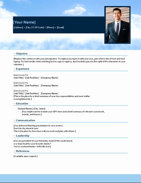 Functional Resume Template Word Luxury Resume Functional Design