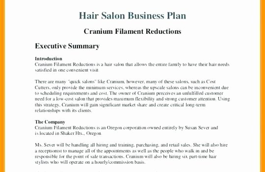 Hair Salon Business Plans Awesome Business Plan for Beauty Salon Hair and Beauty Salon