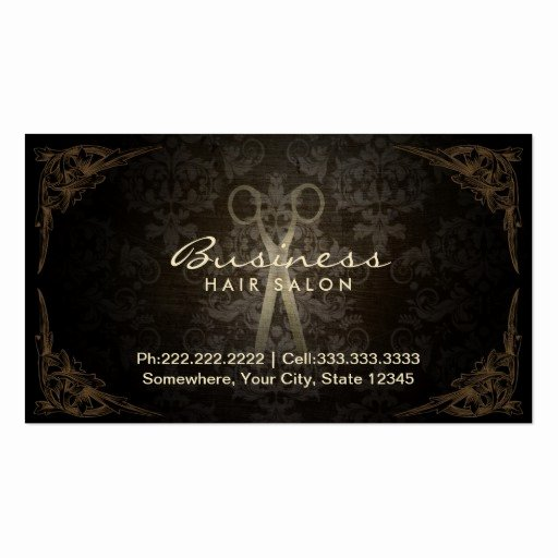 Hair Salons Business Cards Elegant Vintage Damask Hair Stylist Salon Appointment Business