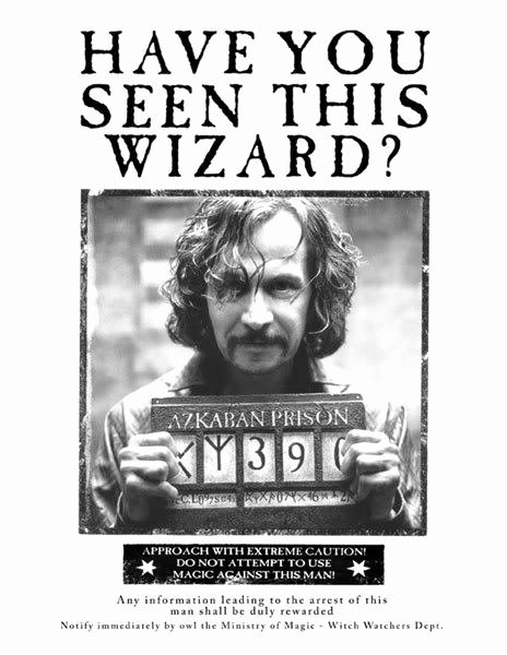 Harry Potter Wanted Poster Elegant 20 Life Lessons I Learned From Harry Potter