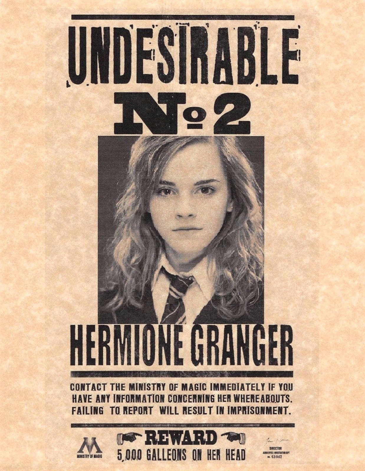 Harry Potter Wanted Poster Elegant Harry Potter Undesirable Number 2 Hermione Granger Flyer