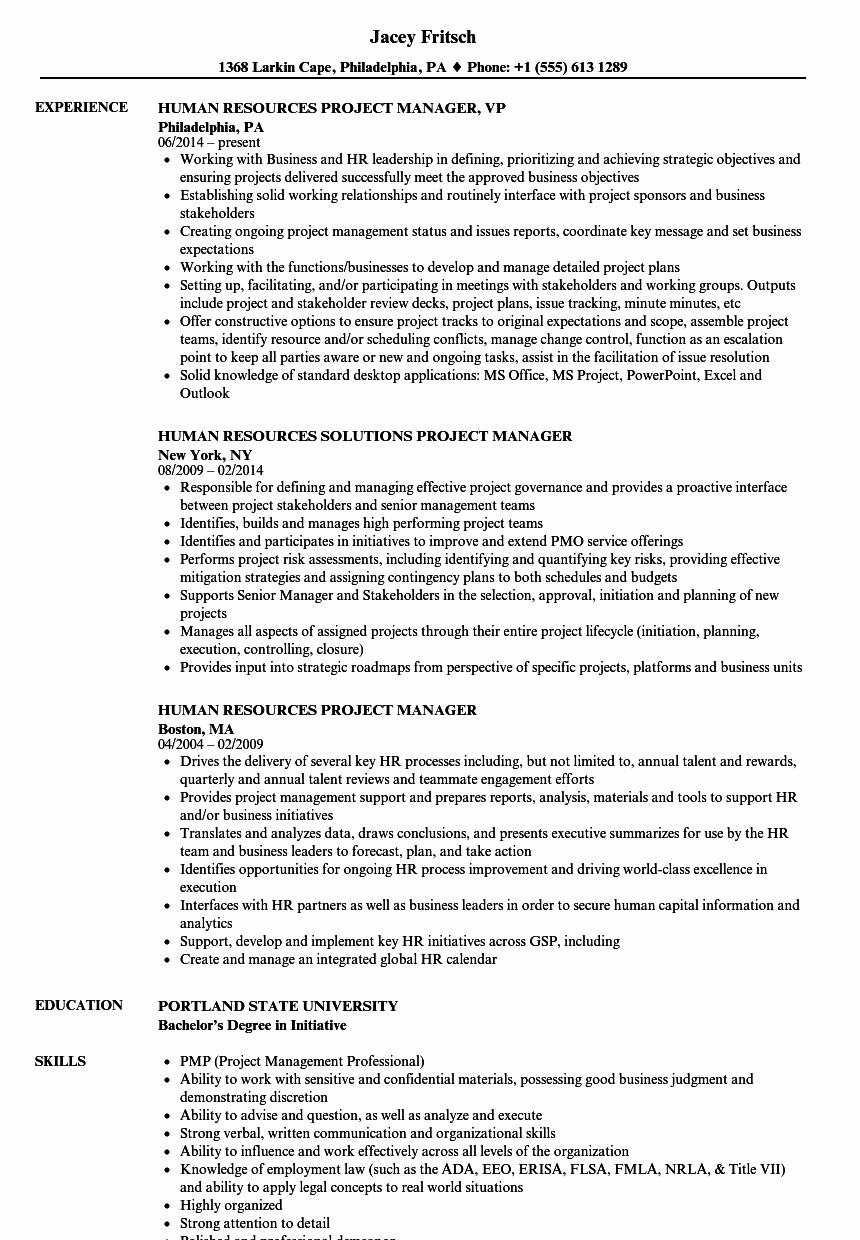 Human Resources Manager Resume Best Of 10 Human Resource Director Resume Examples