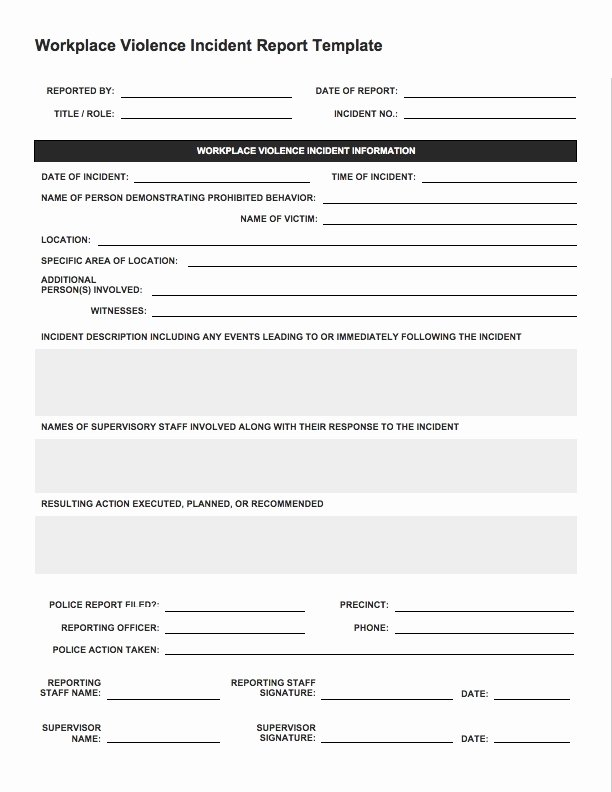 Incident Report Template Word Elegant Incident Report Sample