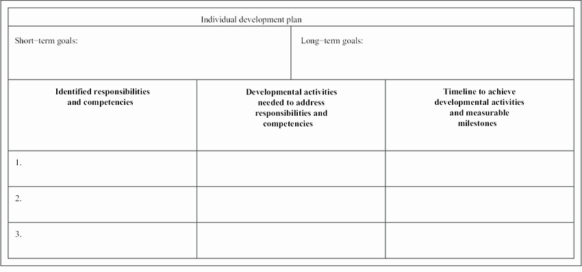 Individual Developent Plan Template New Sample Of An Individual Development Plan Idp Template