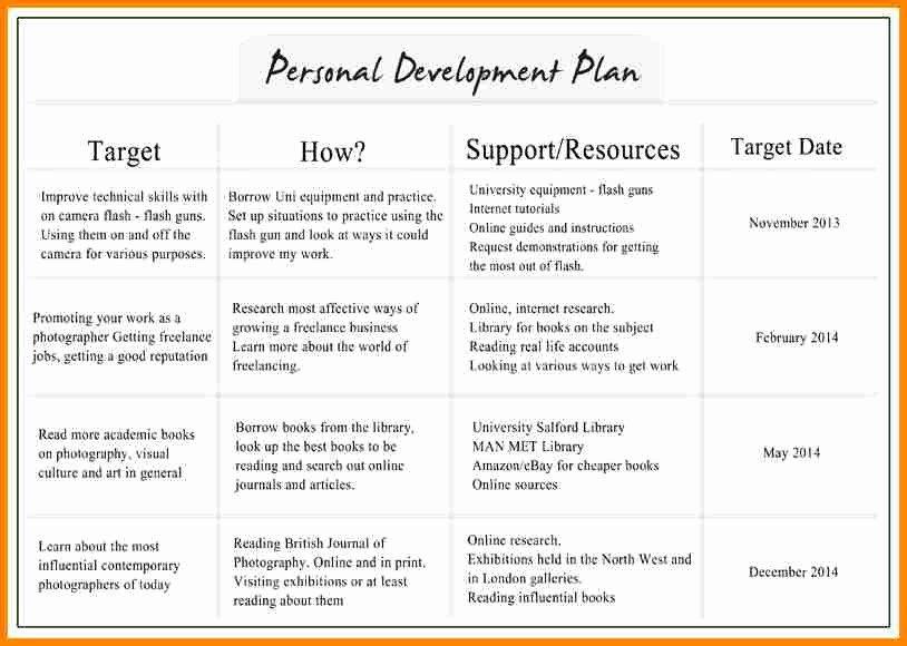 Individual Development Plan Template Elegant 6 Individual Development Plan Examples