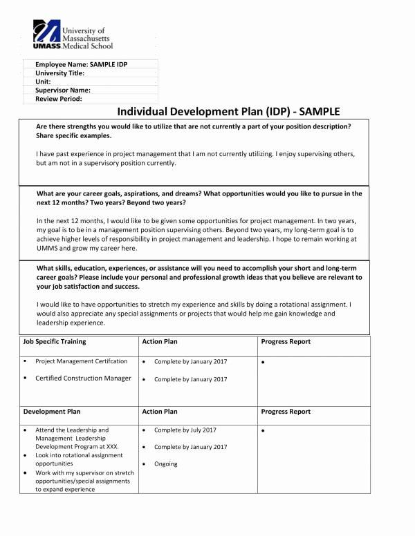 Individual Development Plan Template Fresh Free 10 Personal Development Plan Templates